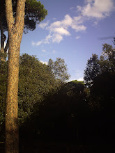 Photo: Torna il sereno (per un po')