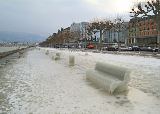2005年1月瑞士日内瓦湖边冻结的汽车和树2