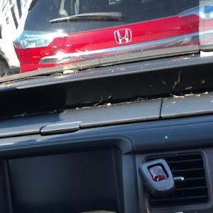 ステップワゴン RG1のカスタム事例画像 モリリンさんの2018年09月20日23:02の投稿
