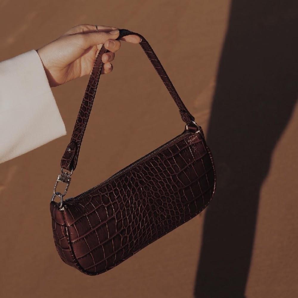 all-types-of-handbags-for-women_Baguette_Bag