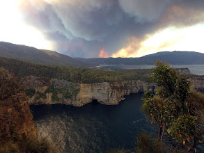 Photo: Woah, bushfire coming!