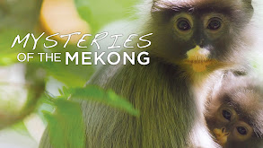 Mysteries of the Mekong thumbnail