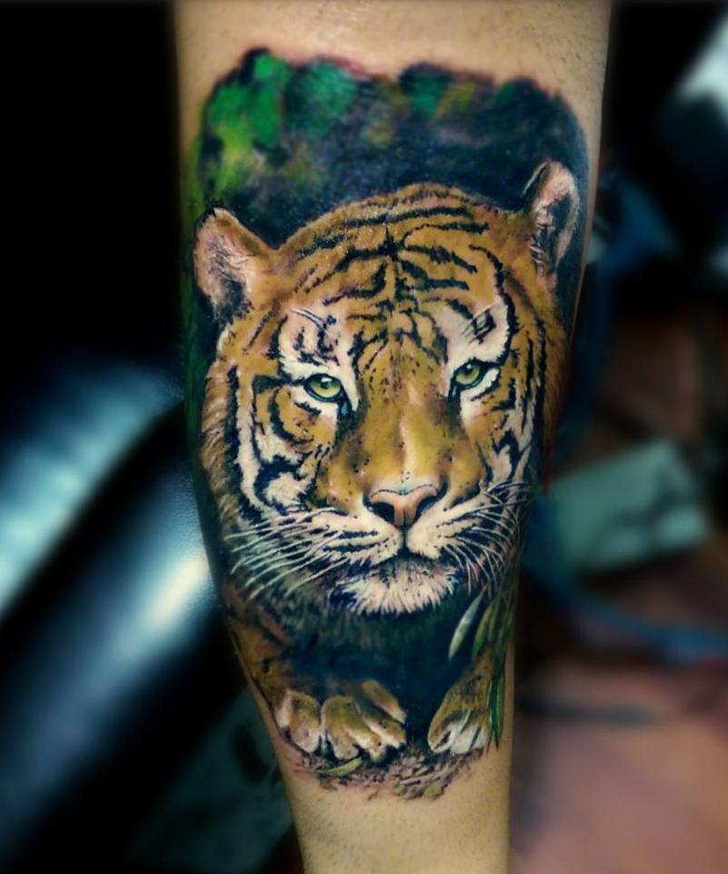 ลายสักเสือ ภาพเหมือนสี