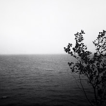Photo: Willapa Bay South Bend, WA with iPhone 5  #blackandwhite #landscape #hipstamatic