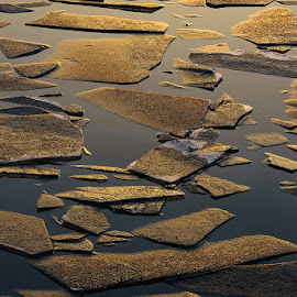 Brocken by Adrian Mitu - Nature Up Close Water ( ice water sunset golden hour lake )