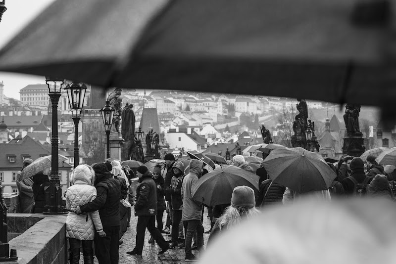 It's Rainy! di AndreaPunzo