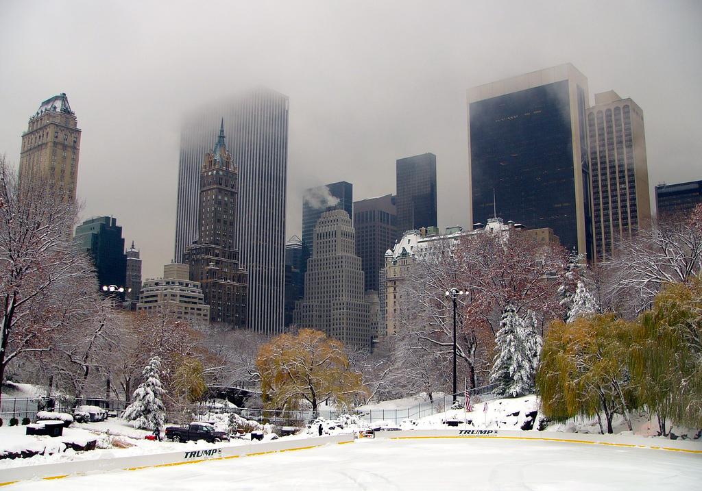 Central_Park_winter_NYC1.jpg