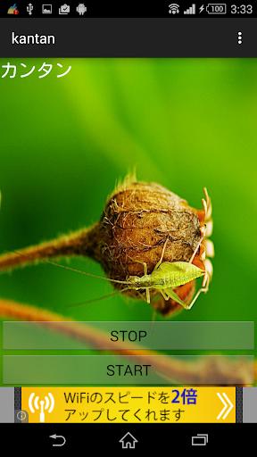 虫鳴き声カンタン
