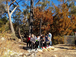 Photo: Day 11: Boxvale Walking Track - A 3-hour bush walking