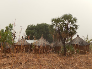 Photo: Les concessions dans le canton de Baga