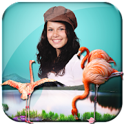 App 3D Birds Live Wallpaper APK for Windows Phone