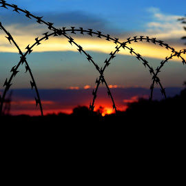 Razor Wire Sunset by Cobus van Zyl - Artistic Objects Other Objects ( sunshine, sunset, dawn, sun, fence )