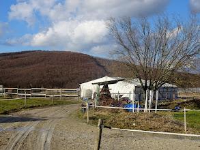 Photo: Beim 'Viereck' ist Quarantäne-Zelt für erkramkte Tiere aufgestellt.