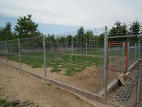 Photo: rok 2011- wymieniamy ogrodzenie wybiegu na wyższe (185 cm)
