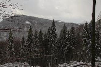 Photo: Výhľady na kopce Kysuckej vrchoviny sú obmedzené počasím aj hustým lesom