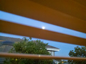 Photo: The moon was peering into my bedroom, that creep.