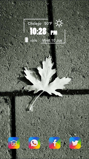The Maple Leaves