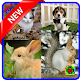 Cute Animals Wallpaper (HD) for PC-Windows 7,8,10 and Mac 1.0