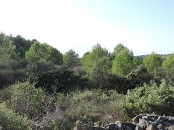 terrain à Aigne (34)