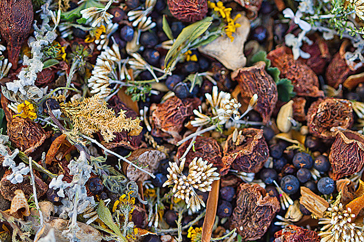 Botanicals used in Inverroche gin