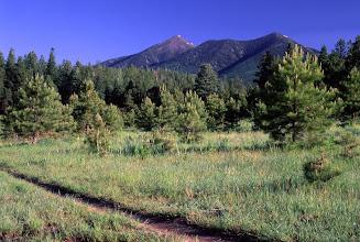 Photo: San Francisco Peaks, Coconino National Forest, Arizona