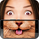 Fluffy kittens mask (game)