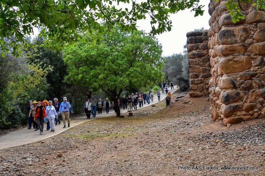 Экскурсия в заповеднике Тель Дан с гидом в Израиле Светлане Фиалковой. У стен Древнего города.
