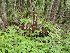 栃木頂切(小方峠分岐)
