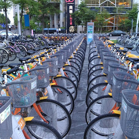 Bicycle Baskets by Jed Mitter - Transportation Bicycles ( bicycle baskets, taiwan, taipei )