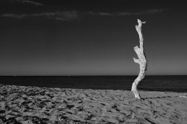 Figura sulla spiaggia  di gianfi51