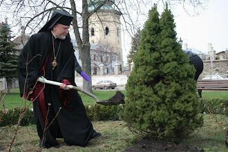 Photo: Владика кидає землю під дерево
