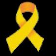 세월호 노란리본 apk