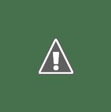 Photo: Toos op snelheid.