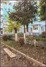 """Photo: Turda, Str. Rapsodiei, Nr.4 - 2018.11.04 """"Târzie toamnă e acum, Se scutur frunzele pe drum, Şi lanurile sunt pustii... De ce nu-mi vii, de ce nu-mi vii?"""", versuri Mihai Eminescu  https://www.facebook.com/photo.php?fbid=2564634420230967&set=a.2099427193418361&type=3&theater"""