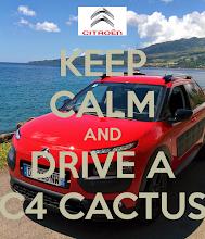 Photo: #C4 #Cactus