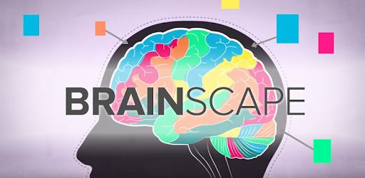 Image result for brainscape french app