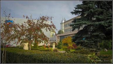 Photo: Piata 1 Decembrie 1918, spatiu verde - 2017.11.01