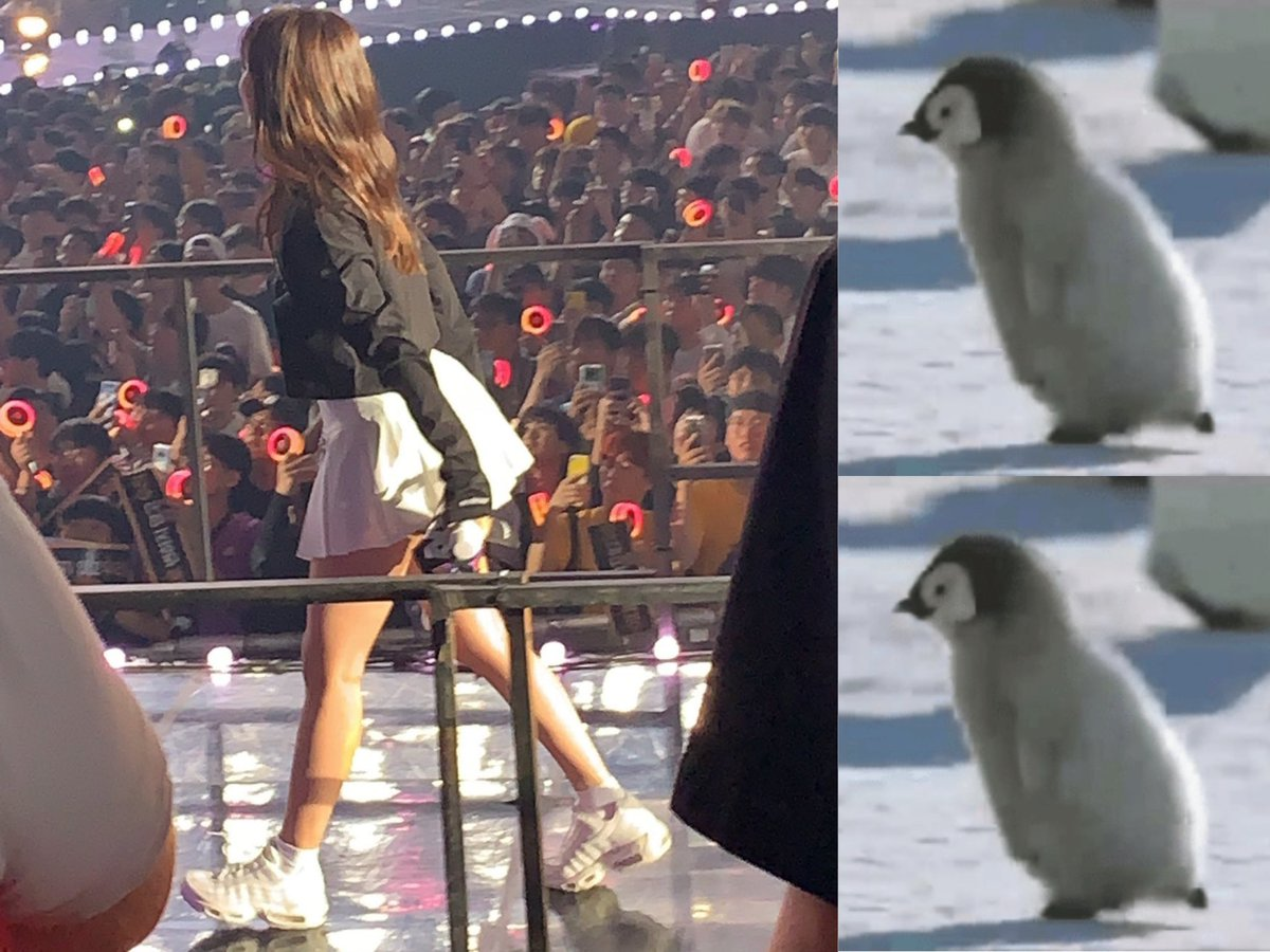 mina_penguin_4