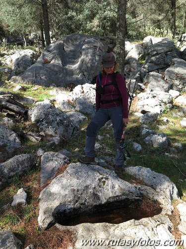 Pilones de la Sierra de Grazalema