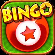 New Bingo - 100% Totally NEW!!