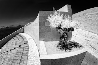 Photo: Urban Olive (Clive Haynes)