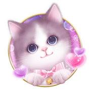 لطيف منفوش القط موضوع