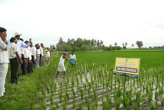 Photo: Weeder demo at IAMWARM Project during 2010 visit of African delegation to India [Photo Courtesy of  Bancy Mati]