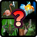 Guess The Animal : Quiz Game APK