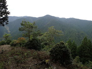 伐採地に出る(日本コバ・衣掛山が見える)