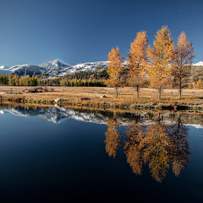 Fall Reflections by George Kremer - Landscapes Mountains & Hills ( sky, pond, mirror, mountains, reflection, yellow, cold, rocky mountains, trees, colorado, colors, peaceful, calm, fall, blue, leaves, snow, lake )