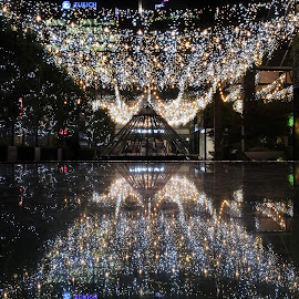 Bright Lights Britomart by Karina Zawilinski - City,  Street & Park  Night ( sparkle, twinkle, canopy, reflection, symmetry, night, lights )