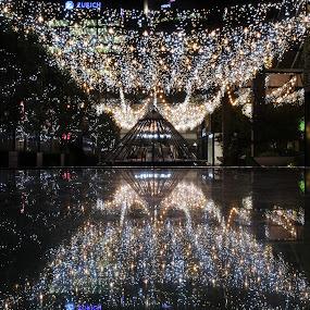 Bright Lights Britomart by Karina Zawilinski - City,  Street & Park  Night ( sparkle, twinkle, canopy, reflection, symmetry, night, lights )