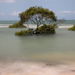 Calm and peaceful  by Reinilda Sissons - Landscapes Waterscapes