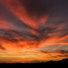 Oro Valley Sunset by Bryan Snider - Landscapes Sunsets & Sunrises ( clouds, arizona sunset, desert, silhouette, valley, mountains, sky, color, sunset, sunsets, arizona, southwest, tucson, silhouettes, landscapes, arizona sunsets )